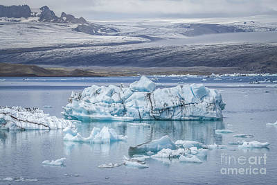 Royalty-Free and Rights-Managed Images - Chasing Ice by Evelina Kremsdorf