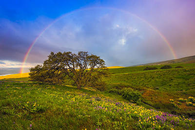 Oregon Photograph - Chasing Rainbows by Joseph Rossbach