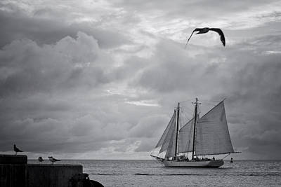 Photograph - Chasing The Wind IIi by Scott Meyer