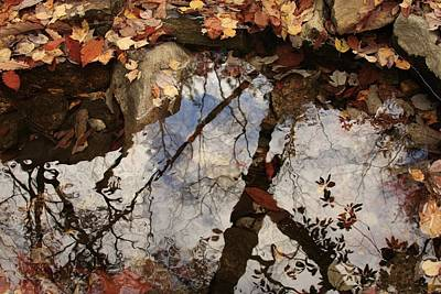Art Print featuring the photograph Cheaha Wilderness Reflection Alabama by Mountains to the Sea Photo