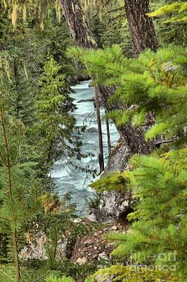 Photograph - Cheakamus River Through The Trees by Adam Jewell