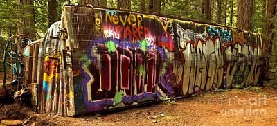 Photograph - Cheakamus River Train Wreck by Adam Jewell