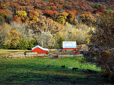 Barn Lots Photograph - Cheavens Farm by Cricket Hackmann