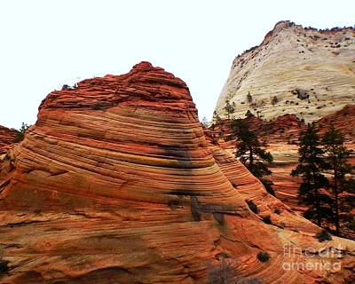Zion National Park Photograph - Checkers by Scott Cameron