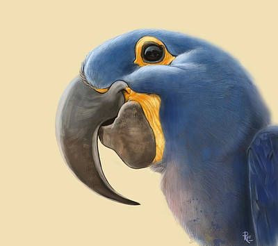 Yellow Beak Painting - Cheeky Parrot by Arie Van der Wijst