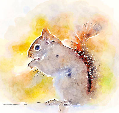 Photograph - Cheeky Squirrel by Kerri Farley