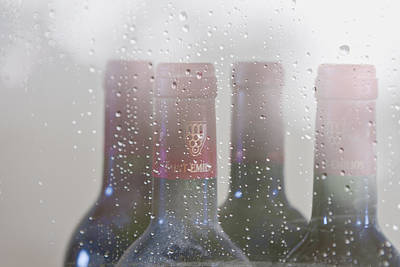 Vino Photograph - Cheer On A Rainy Day by Georgia Fowler