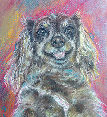 Custom Pet Portrait Drawing - Cheerful Dashound Dog Pastel Painting by Sun Sohovich