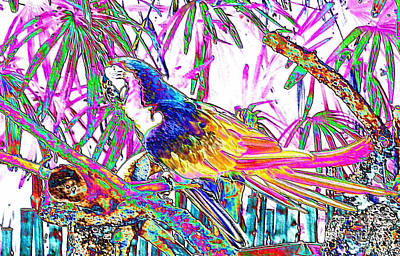 Cheerful Parrot. Colorful Art Collection. Promotion - August 2015 Art Print