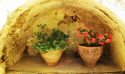 Blue Door Greece Photograph - Cheerful Potted Flowers by Cimorene Photography
