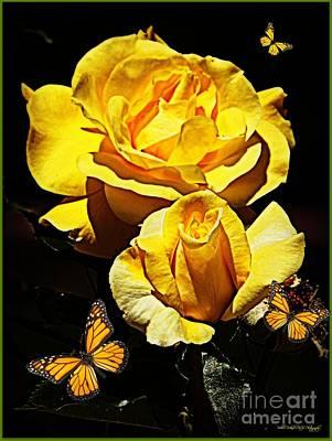Photograph - Cheerful Roses by Bobbee Rickard