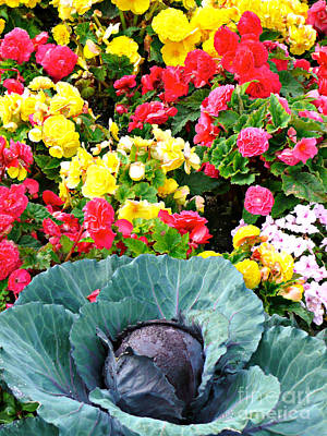 Photograph - Cheery Colorful Garden by Rachel Gagne
