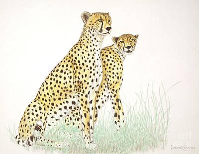 Cheetah Drawing - Cheetah Couple by Dag Sla