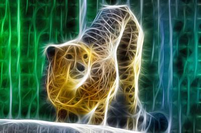 Cheetah Digital Art - Cheetah Fractal by Bill Cannon
