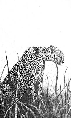 Cheetah Drawing - Cheetah In Long Grass by Sue Callinan