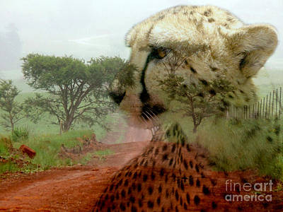 Photograph - Cheetah In The Wilderness by Annie Zeno