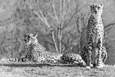 Cheetah Digital Art - Cheetah On The Lookout-five by David Allen Pierson