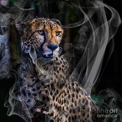 Photograph - Cheetah One by Ken Frischkorn