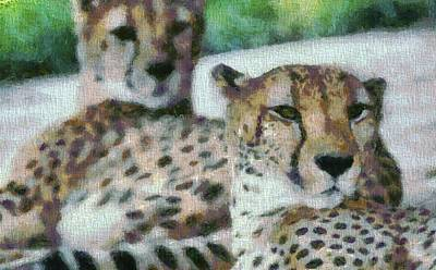 Cheetah Portrait Art Print by Dan Sproul