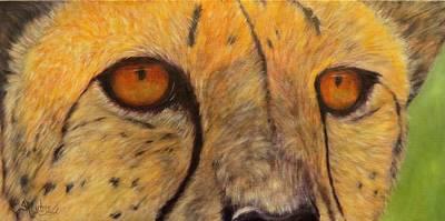 Pelts Painting - Kito,cheetah by Sandra Cutrer