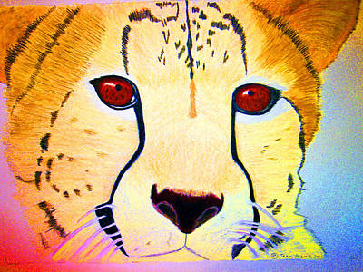 Cheetah Drawing - Cheetah With Color by Jean Marie Economen