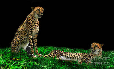Digital Art - Cheetahs by E B Schmidt