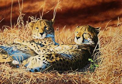 Wall Art - Painting - Cheetahs by Julian Wheat