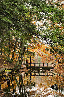 Photograph - Chenango Valley State Park by Christina Rollo