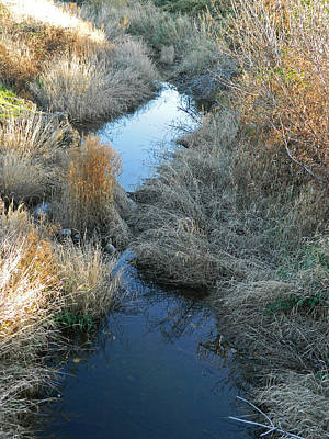 Photograph - Chenoweth Creek by Jacqueline  DiAnne Wasson
