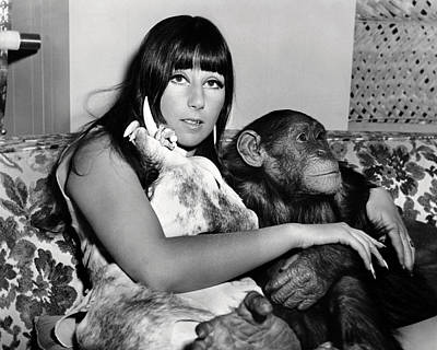 1960 Photograph - Cher  In Good Times  by Silver Screen