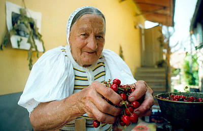 Photograph - Cherries For Sale by Emanuel Tanjala