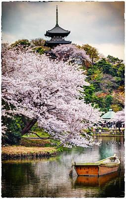 Cherry Blossom 2014 Art Print