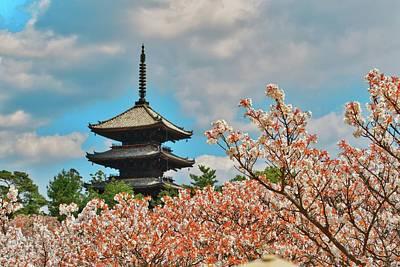 Photograph - Cherry Blossom And Pagoda by Joyoyo Chen