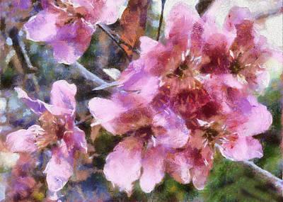Digital Art - Cherry Blossom by Charmaine Zoe