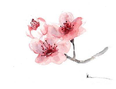 Cherry Blossoms Painting - Cherry Blossom Flower Watercolor Art Print Painting by Joanna Szmerdt