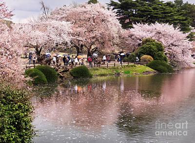 Cherry Blossom In Park In Tokyo Art Print by Oleksiy Maksymenko