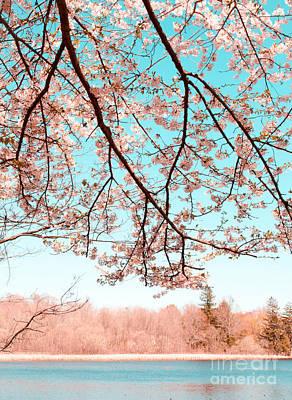Mixed Media - Cherry Blossom On The Lake by Andrea Anderegg