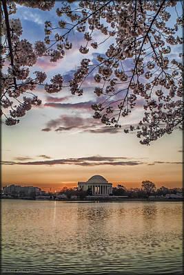 Photograph - Cherry Blossom Sunrise by Erika Fawcett