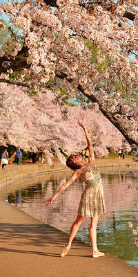 Cherry Blossoms 2013 - 077 Art Print by Metro DC Photography