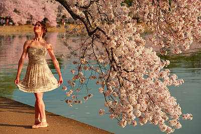 Cherry Blossoms 2013 - 082 Art Print by Metro DC Photography