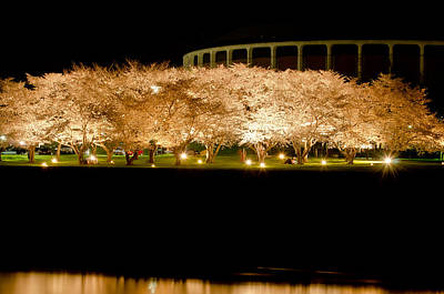 Cherry Blossoms Across The Hocking Print by Shirley Tinkham
