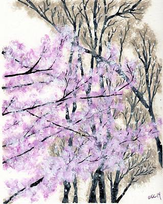 Cherry Blossoms In Spring Snow Original by Anne Clark