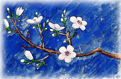 Cherry Tree Painting - Cherry Blossoms by Irina Sztukowski