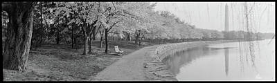 Park Benches Photograph - Cherry Blossoms View At Tidal Basin by Fred Schutz Collection