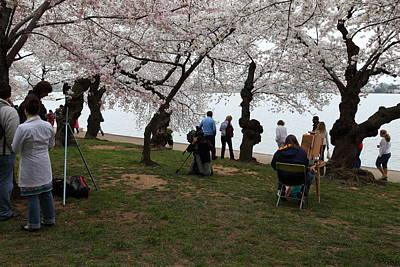 Jefferson Photograph - Cherry Blossoms - Washington Dc - 0113132 by DC Photographer