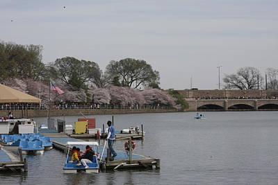 Cherry Blossoms - Washington Dc - 011327 Art Print by DC Photographer