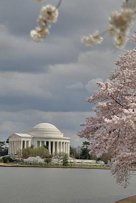 Outside Photograph - Cherry Blossoms With Jefferson Memorial - Washington Dc - 011310 by DC Photographer
