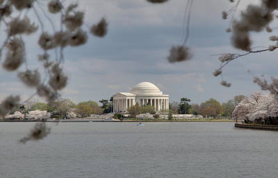 President Photograph - Cherry Blossoms With Jefferson Memorial - Washington Dc - 011318 by DC Photographer