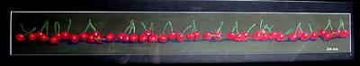 Still Life Drawings - Cherries In A Row by Joseph Hawkins