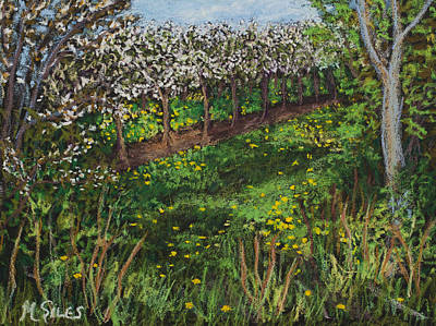 Painting - Cherry Orchard Evening by Madonna Siles